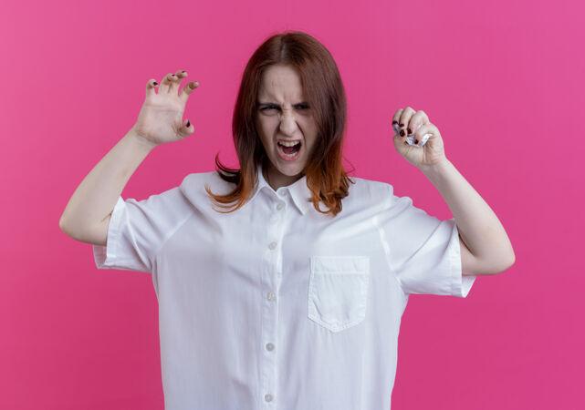 愤怒的年轻红发女孩粉碎纸张和做老虎式隔离在粉红色的墙上